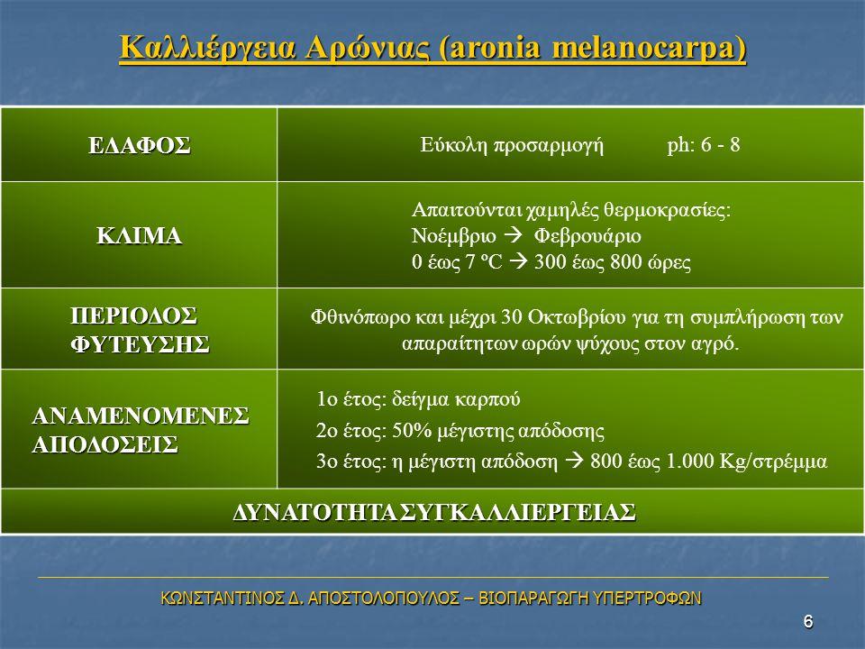 Καλλιέργεια Αρώνιας (aronia melanocarpa)