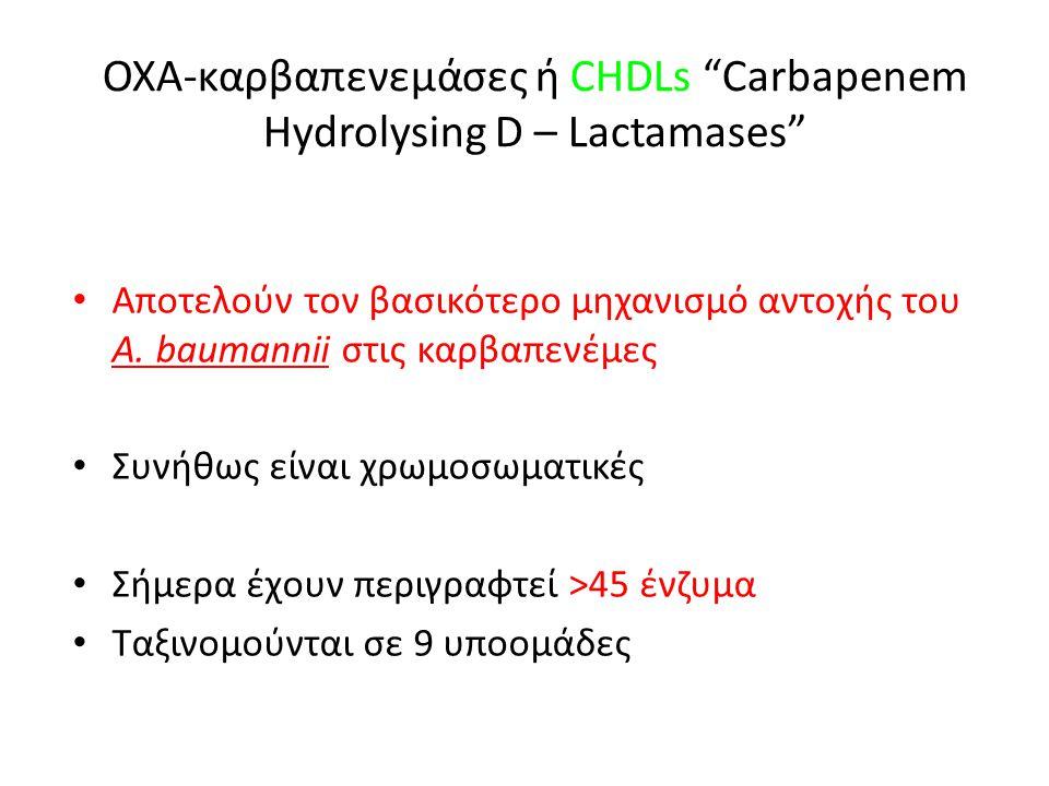 ΟΧΑ-καρβαπενεμάσες ή CHDLs Carbapenem Hydrolysing D – Lactamases