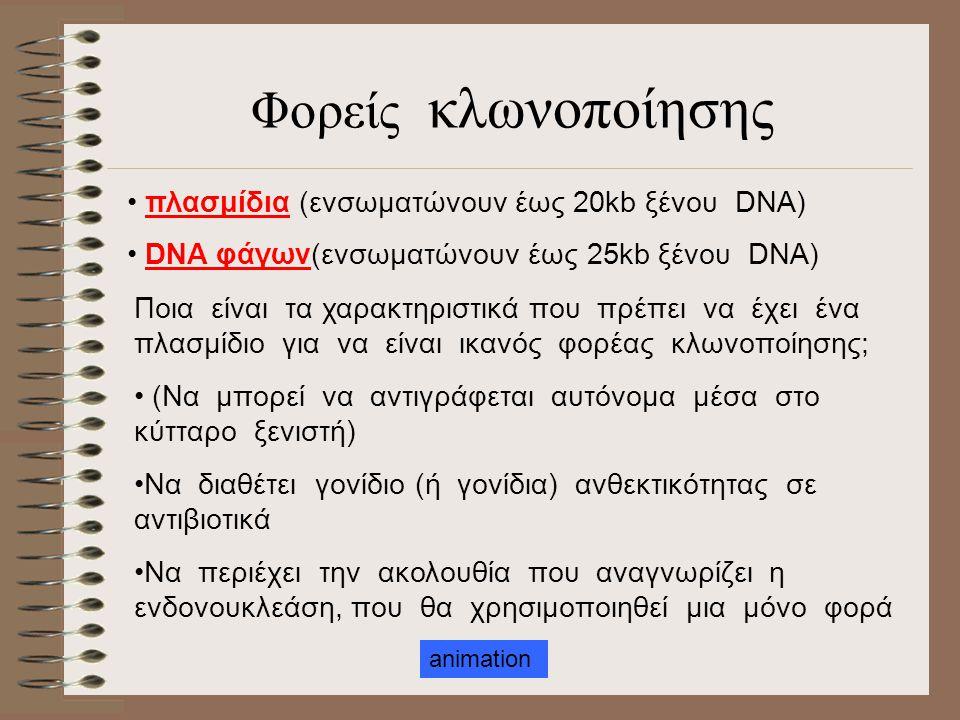 Φορείς κλωνοποίησης πλασμίδια (ενσωματώνουν έως 20kb ξένου DNA)
