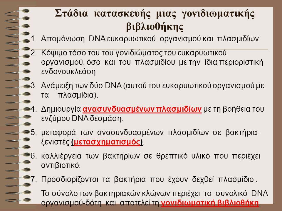 Στάδια κατασκευής μιας γονιδιωματικής βιβλιοθήκης