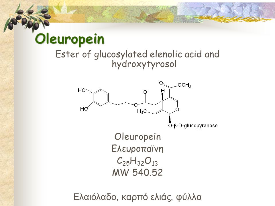 Oleuropein Ester of glucosylated elenolic acid and hydroxytyrosol