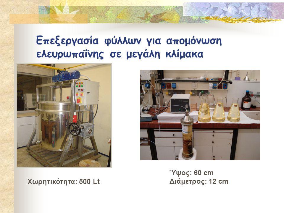 Επεξεργασία φύλλων για απομόνωση ελευρωπαΐνης σε μεγάλη κλίμακα