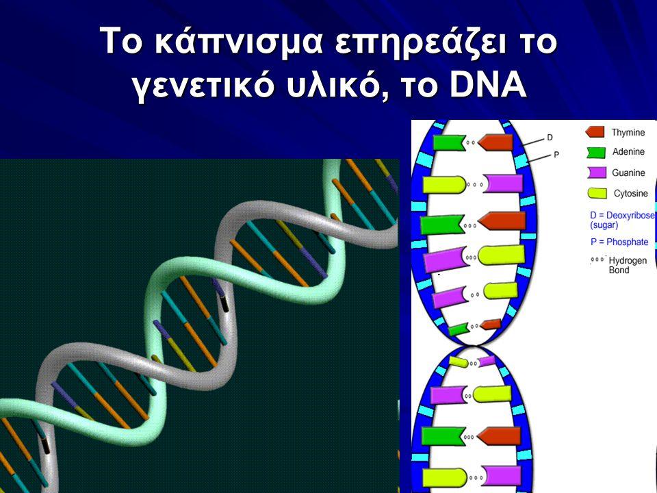 Το κάπνισμα επηρεάζει το γενετικό υλικό, το DNA