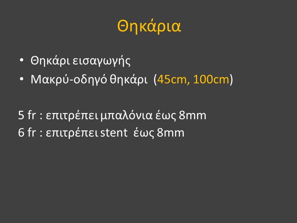Θηκάρια Θηκάρι εισαγωγής Μακρύ-οδηγό θηκάρι (45cm, 100cm)