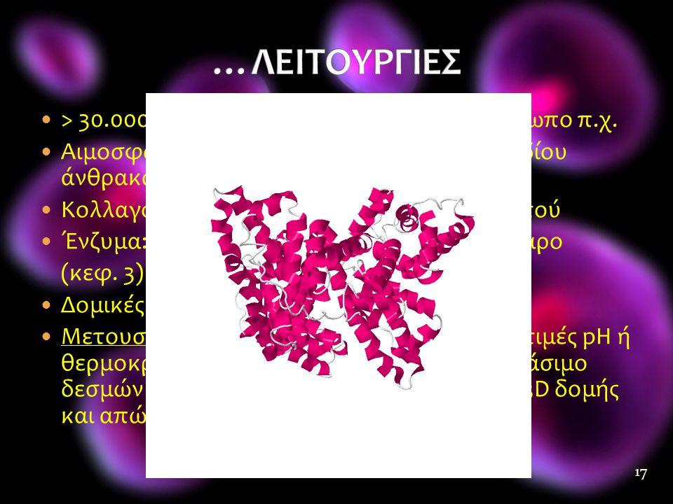 …ΛΕΙΤΟΥΡΓΙΕΣ > 30.000 διαφορετικές πρωτεΐνες στον άνθρωπο π.χ.