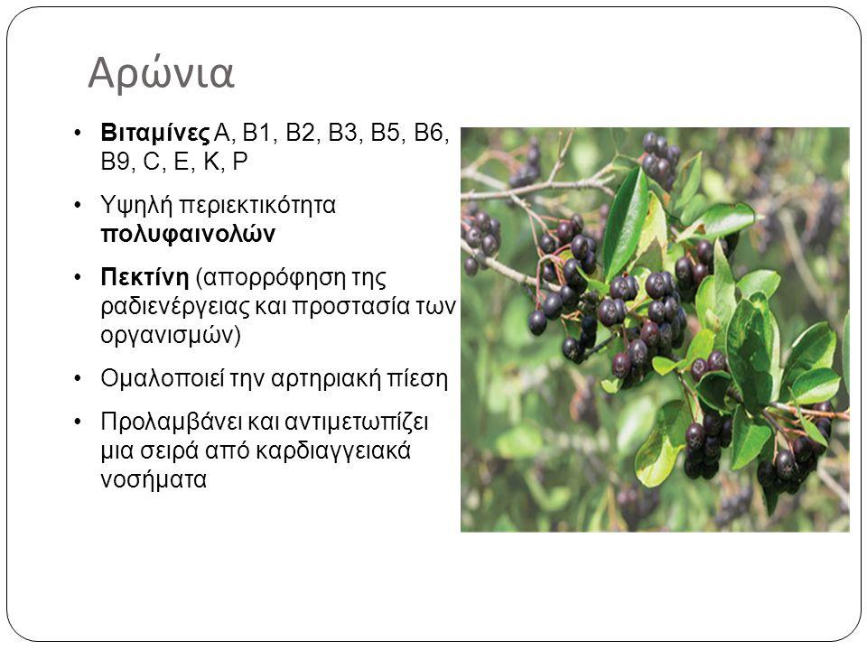 Αρώνια Βιταμίνες Α, Β1, Β2, Β3, Β5, Β6, Β9, C, E, K, P