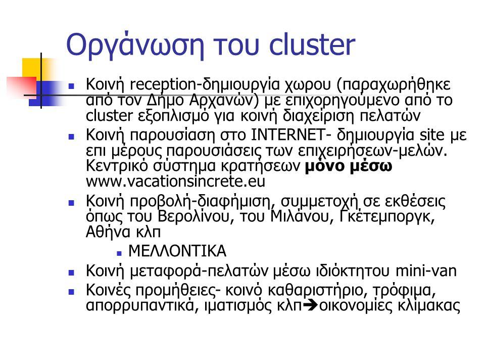 Οργάνωση του cluster