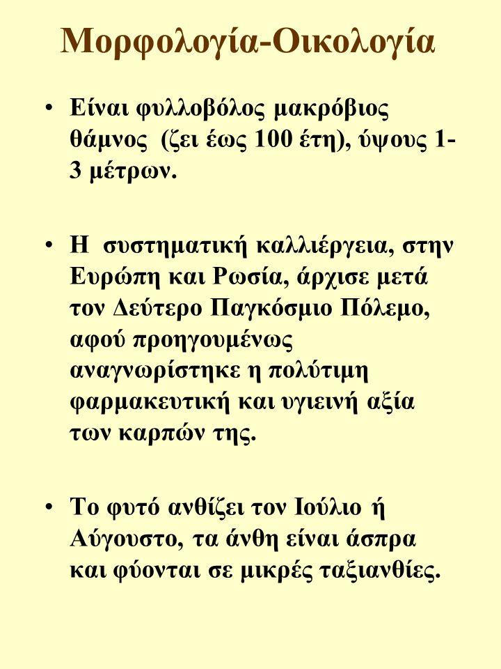 Μορφολογία-Οικολογία