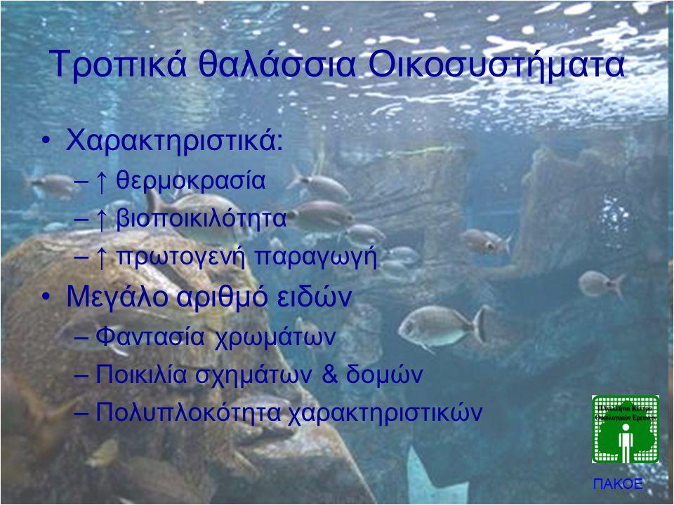 Τροπικά θαλάσσια Οικοσυστήματα
