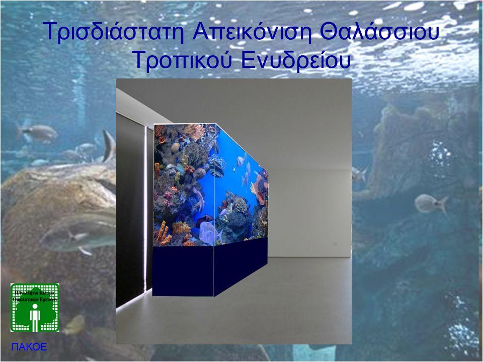 Τρισδιάστατη Απεικόνιση Θαλάσσιου Τροπικού Ενυδρείου