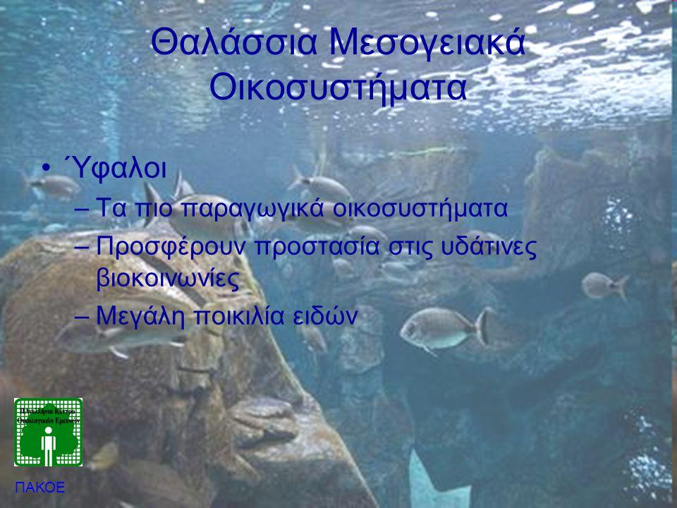 Θαλάσσια Μεσογειακά Οικοσυστήματα