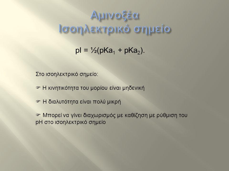 Αμινοξέα Ισοηλεκτρικό σημείο