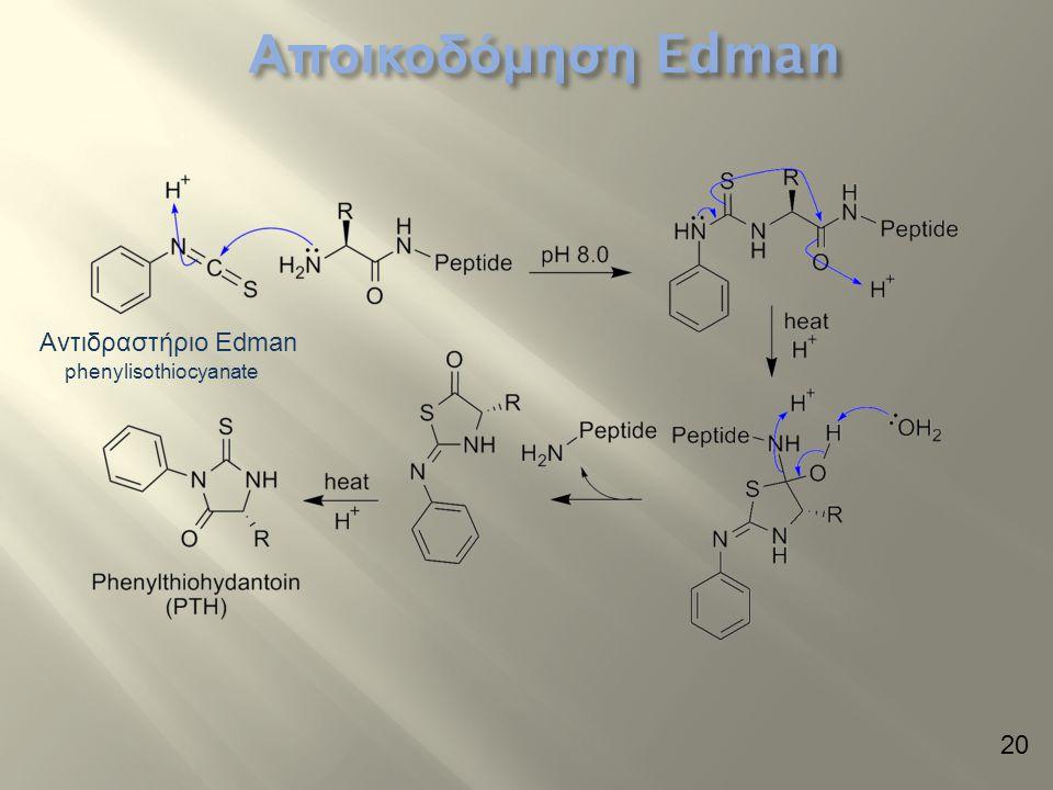 Αποικοδόμηση Edman Αντιδραστήριο Edman phenylisothiocyanate 20