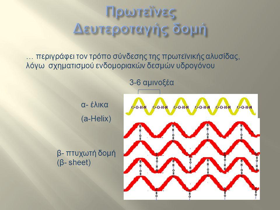 Πρωτεϊνες Δευτεροταγής δομή