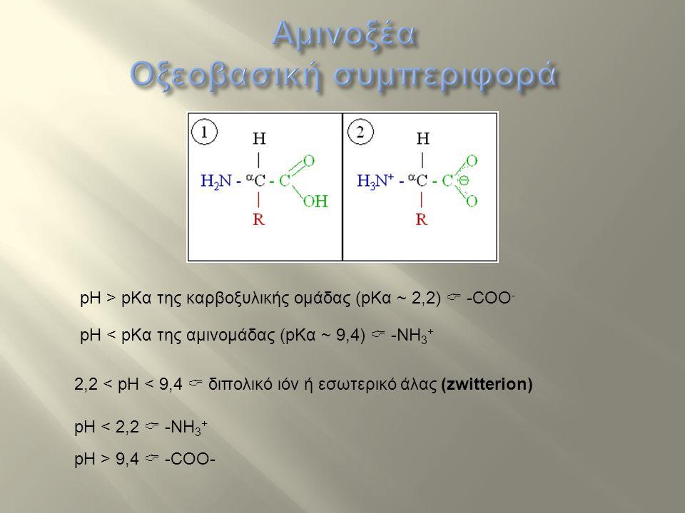 Αμινοξέα Οξεοβασική συμπεριφορά