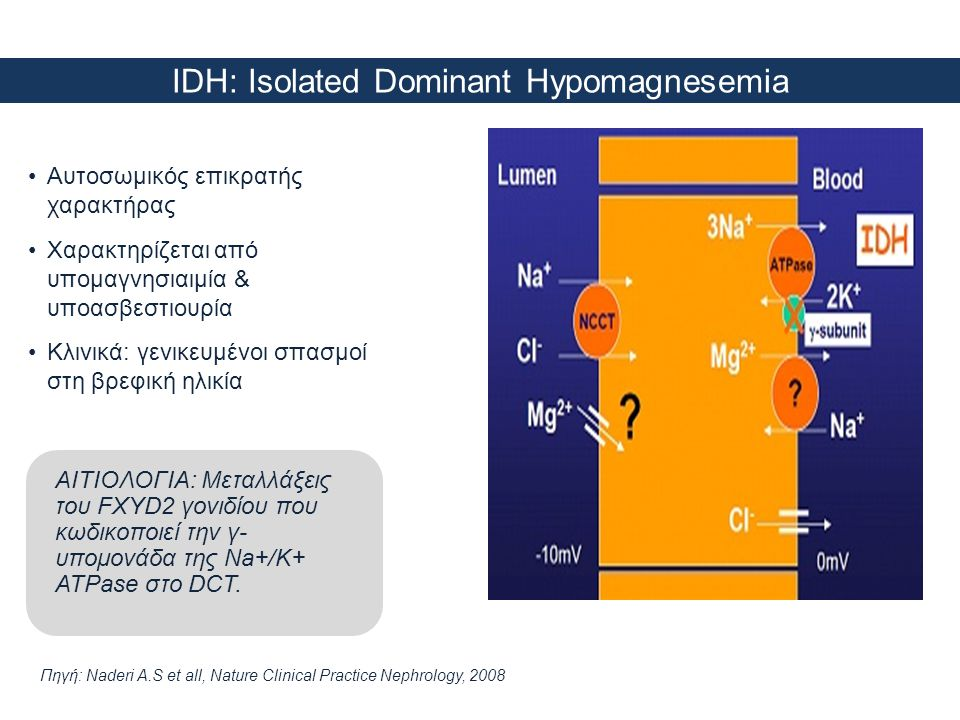 IDH: Isolated Dominant Hypomagnesemia