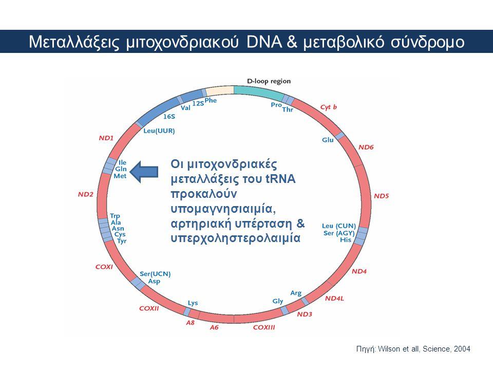 Μεταλλάξεις μιτοχονδριακού DNA & μεταβολικό σύνδρομο