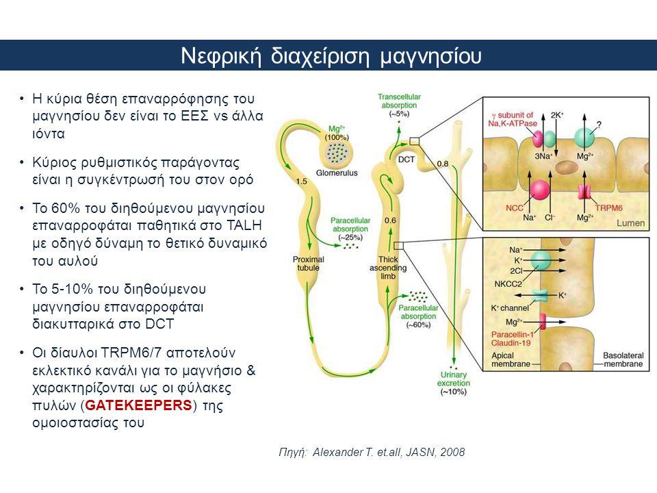Νεφρική διαχείριση μαγνησίου