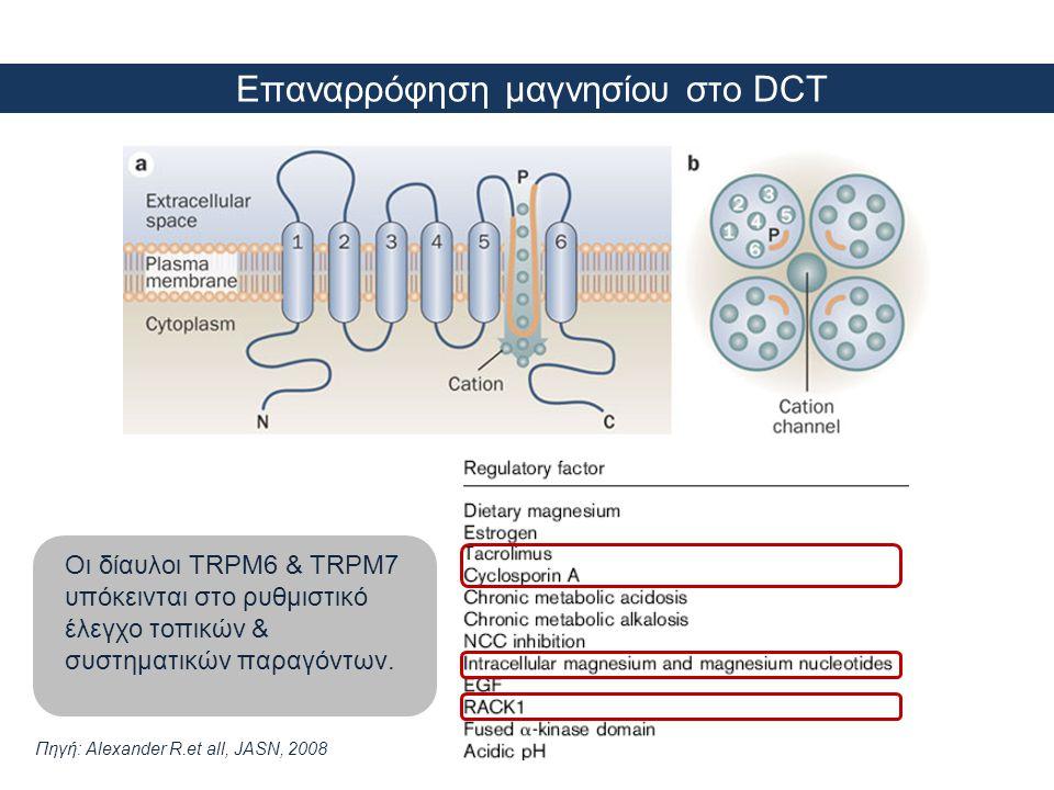 Επαναρρόφηση μαγνησίου στο DCT