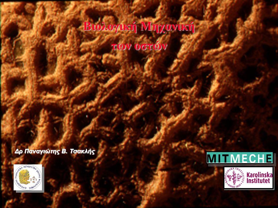 Bιολογική Μηχανική των οστών