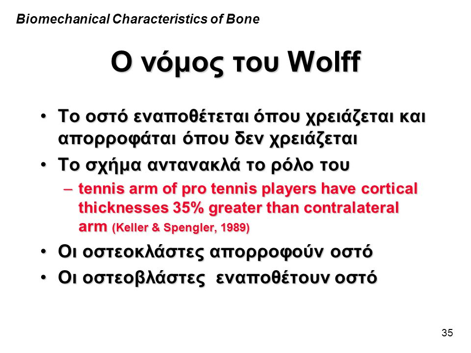 Biomechanical Characteristics of Bone