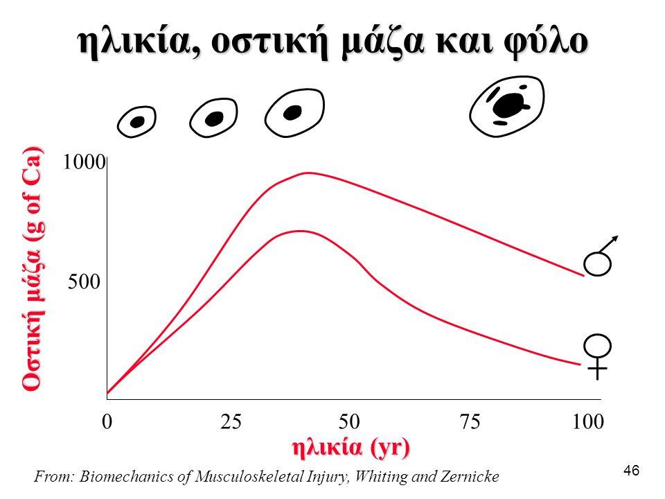 ηλικία, οστική μάζα και φύλο
