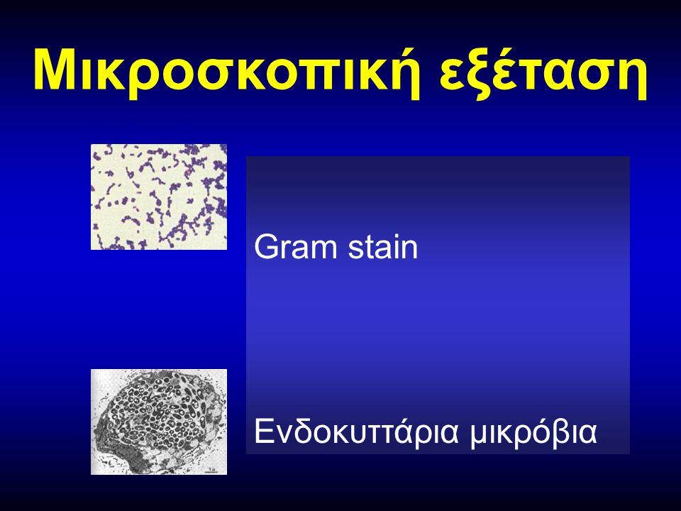 Mικροσκοπική εξέταση Gram stain Ενδοκυττάρια μικρόβια