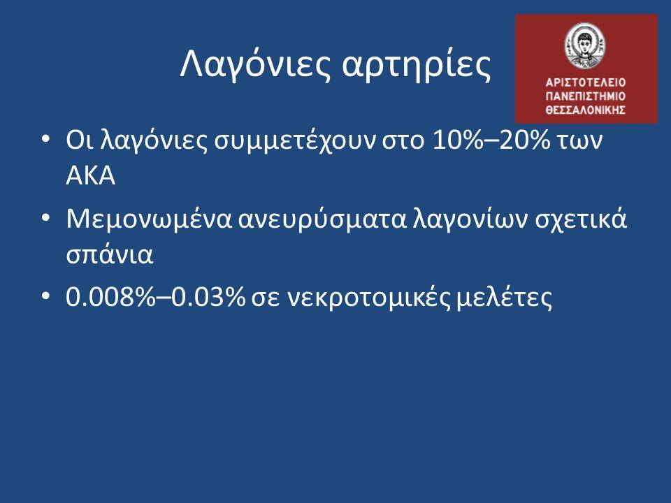 Λαγόνιες αρτηρίες Οι λαγόνιες συμμετέχουν στο 10%–20% των ΑΚΑ