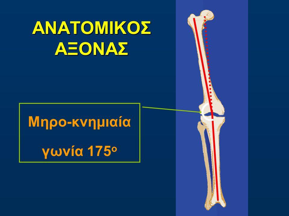 ΑΝΑΤΟΜΙΚΟΣ ΑΞΟΝΑΣ Μηρο-κνημιαία γωνία 175ο