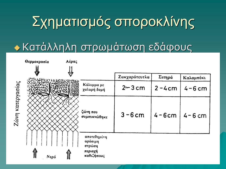 Σχηματισμός σποροκλίνης