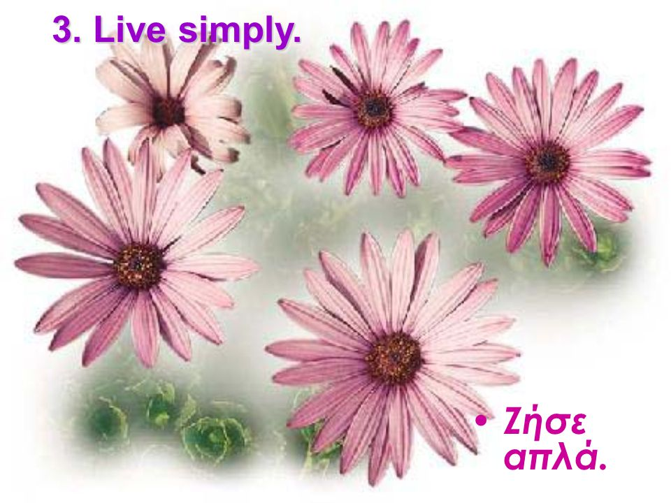 3. Live simply. Ζήσε απλά.