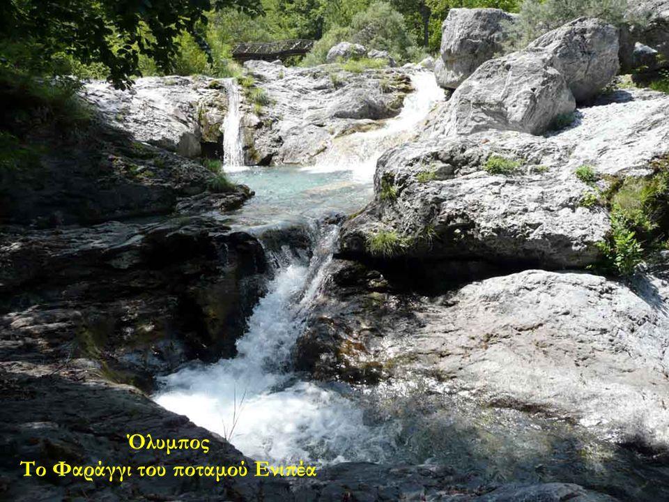 Το Φαράγγι του ποταμού Ενιπέα