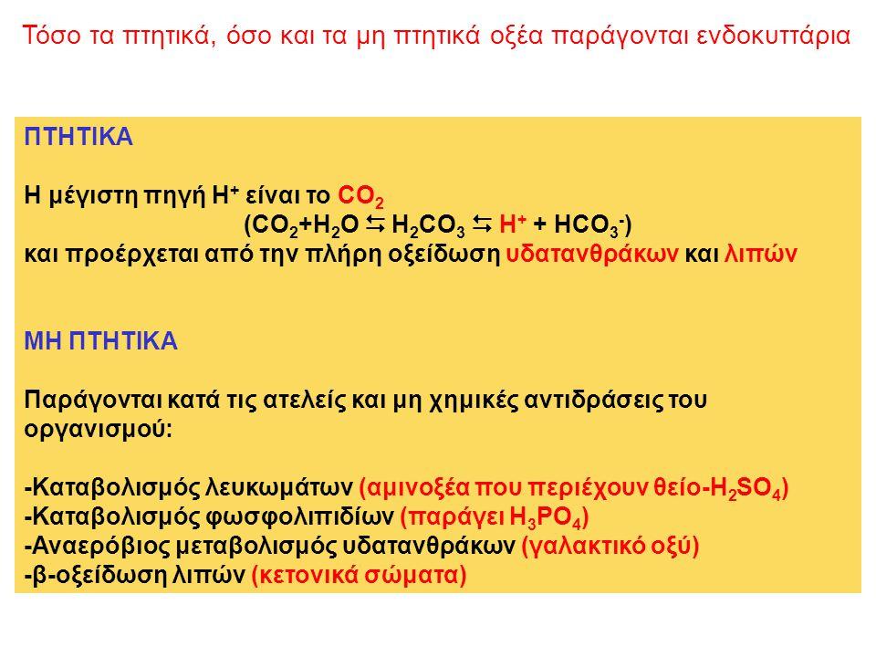 Τόσο τα πτητικά, όσο και τα μη πτητικά οξέα παράγονται ενδοκυττάρια
