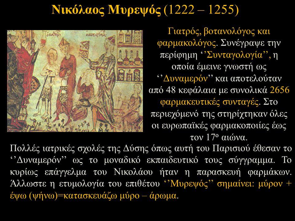 Νικόλαος Μυρεψός (1222 – 1255)