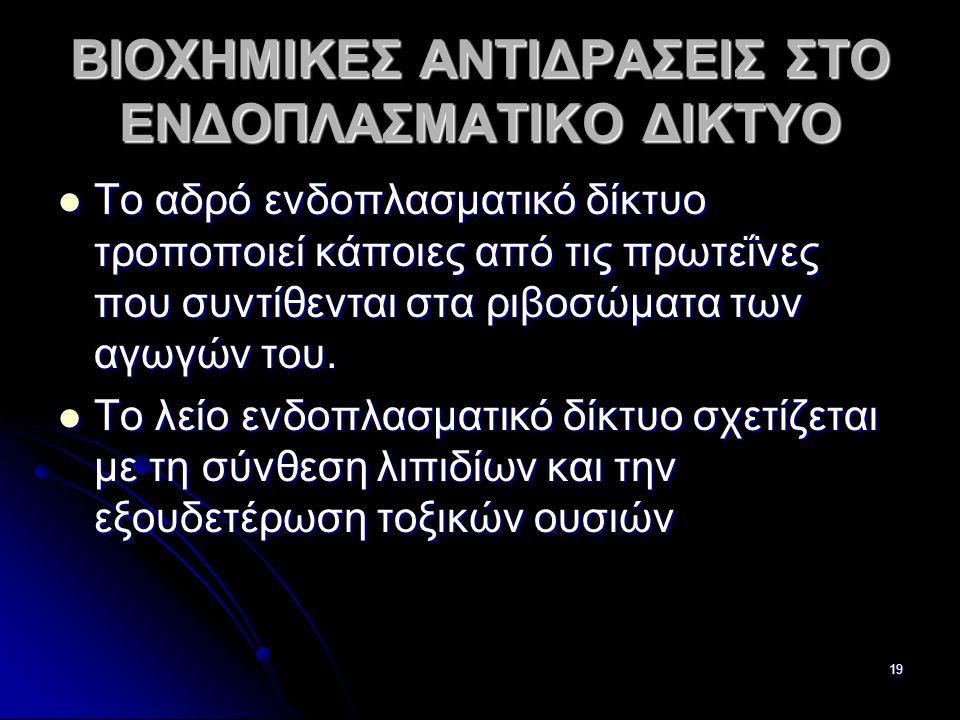 ΒΙΟΧΗΜΙΚΕΣ ΑΝΤΙΔΡΑΣΕΙΣ ΣΤΟ ΕΝΔΟΠΛΑΣΜΑΤΙΚΟ ΔΙΚΤΥΟ
