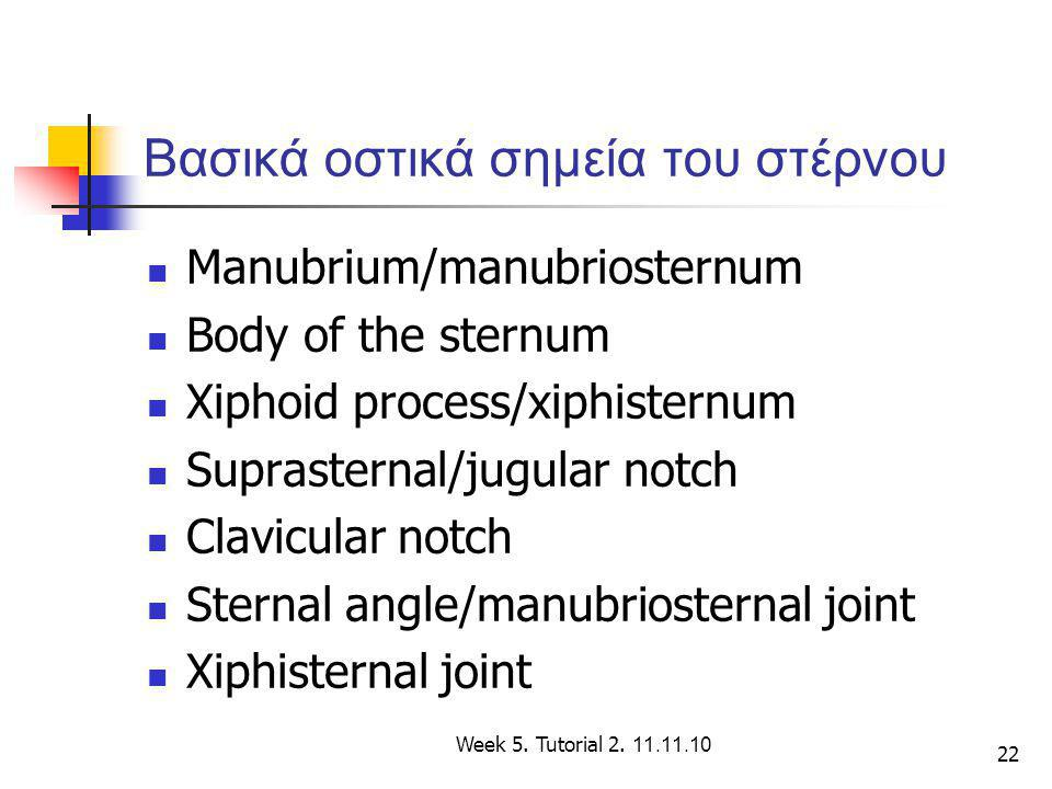 Βασικά οστικά σημεία του στέρνου
