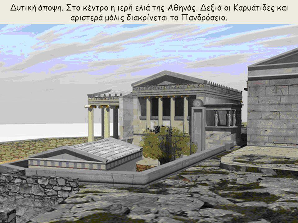 Δυτική άποψη. Στο κέντρο η ιερή ελιά της Αθηνάς