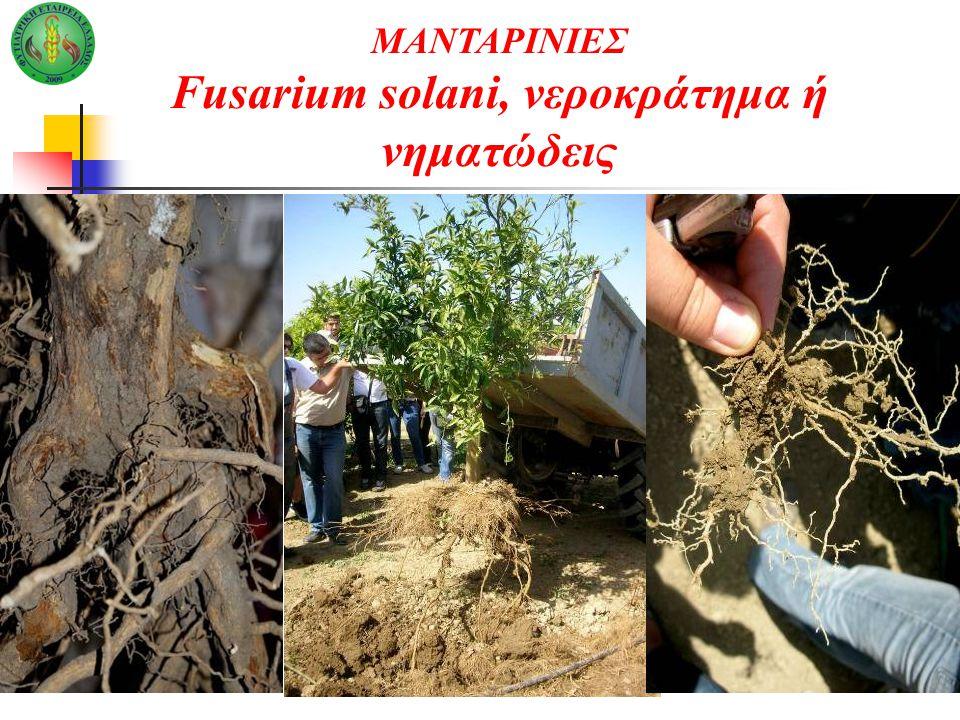 Fusarium solani, νεροκράτημα ή νηματώδεις