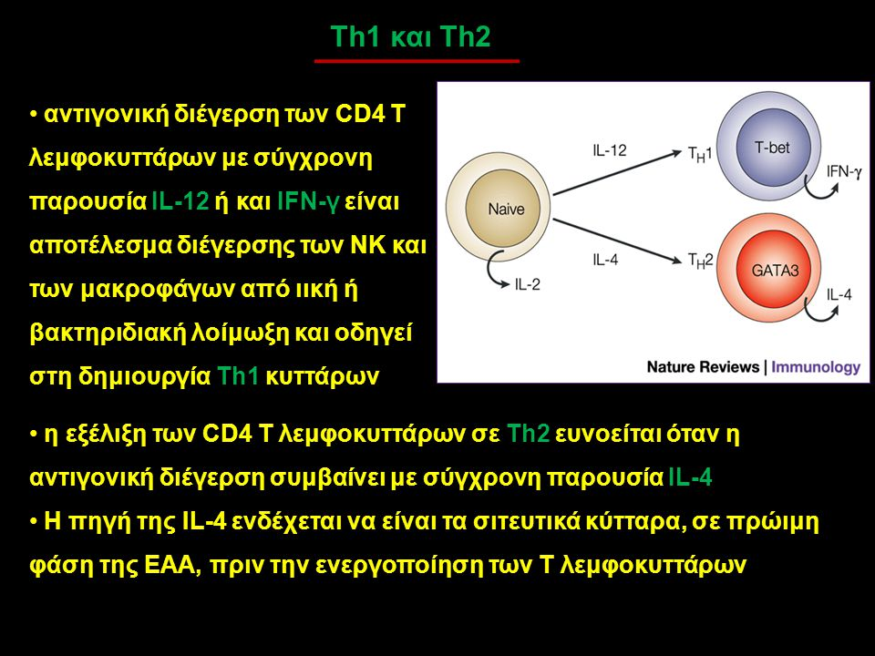 Th1 και Th2