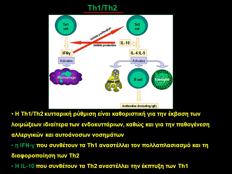Th1/Th2