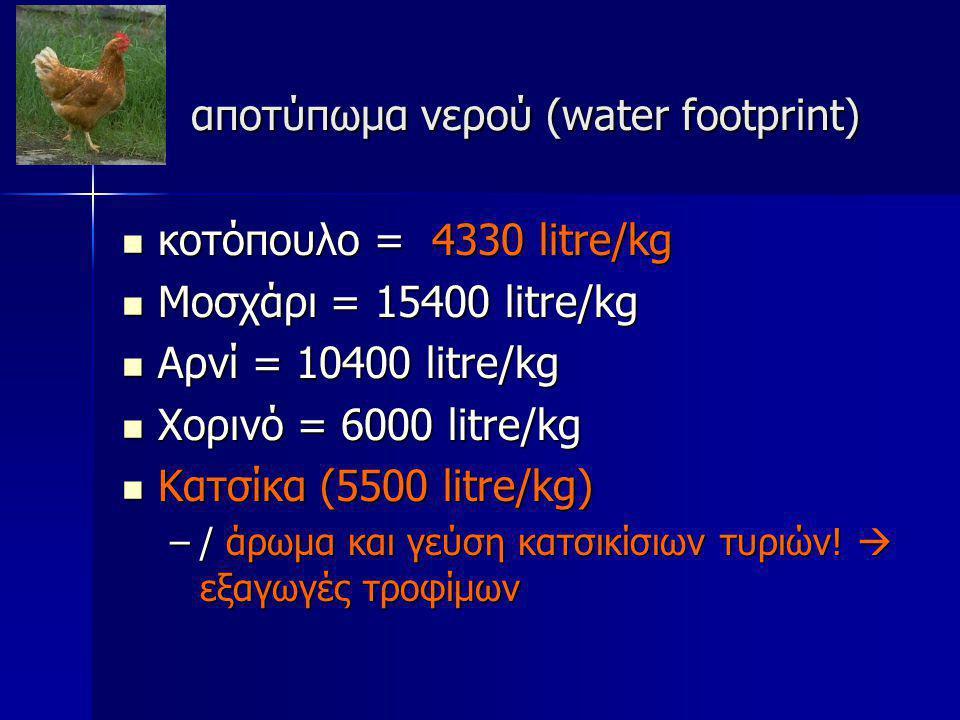 αποτύπωμα νερού (water footprint)
