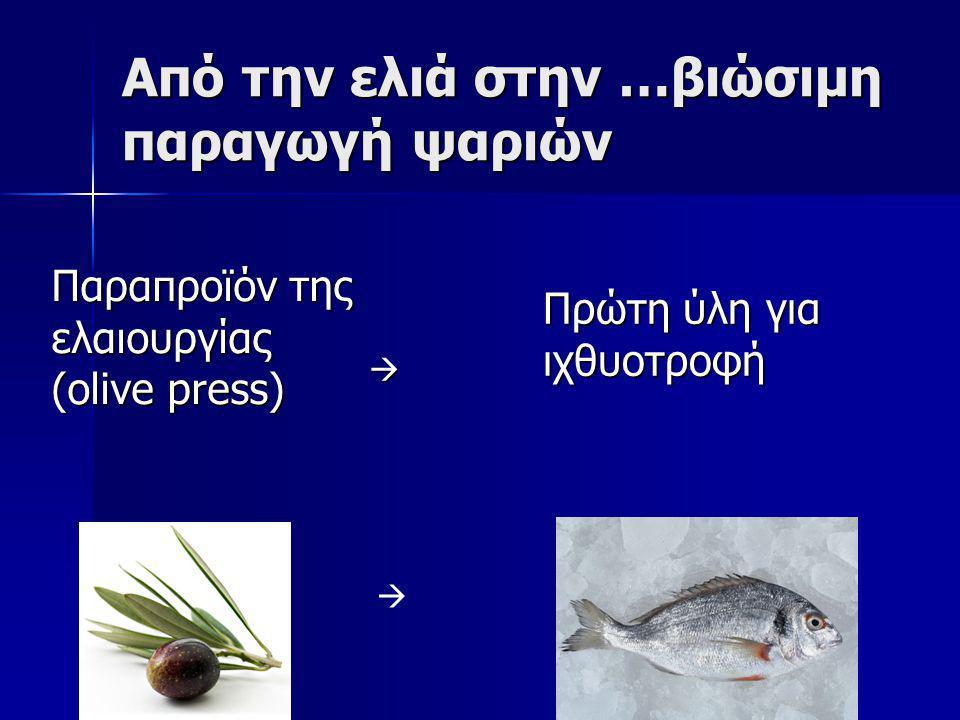Από την ελιά στην …βιώσιμη παραγωγή ψαριών
