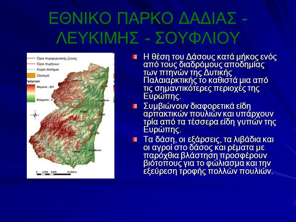 ΕΘΝΙΚΟ ΠΑΡΚΟ ΔΑΔΙΑΣ - ΛΕΥΚΙΜΗΣ - ΣΟΥΦΛΙΟΥ