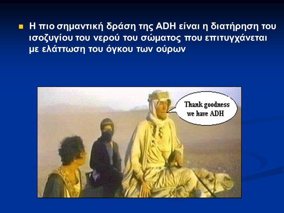 Η πιο σημαντική δράση της ADH είναι η διατήρηση του