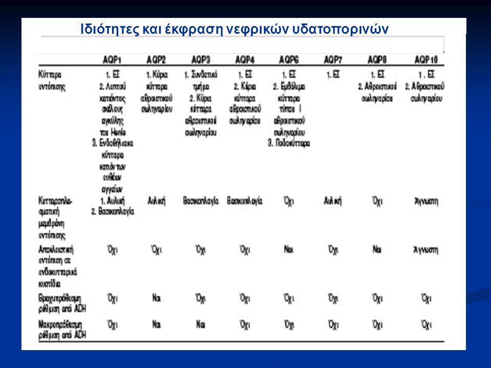 Ιδιότητες και έκφραση νεφρικών υδατοπορινών