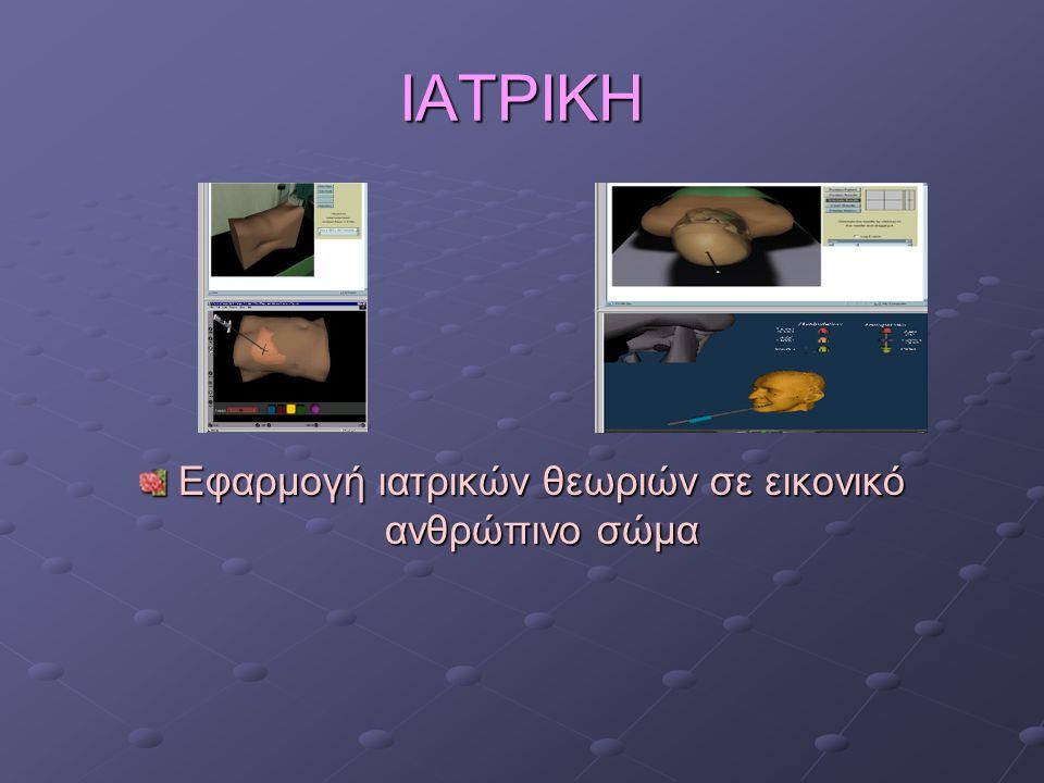 Εφαρμογή ιατρικών θεωριών σε εικονικό ανθρώπινο σώμα