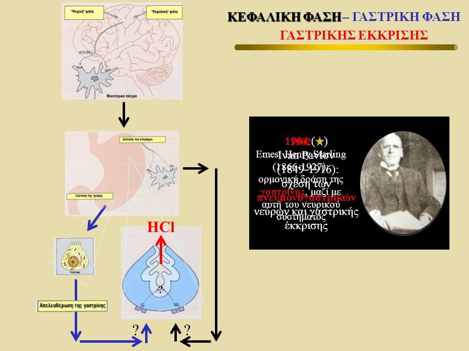 σχέση των πνευμονογαστρικών νεύρων και γαστρικής έκκρισης