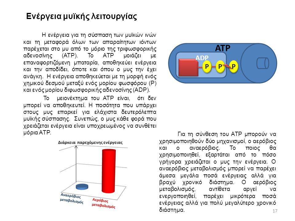 Ενέργεια μυϊκής λειτουργίας