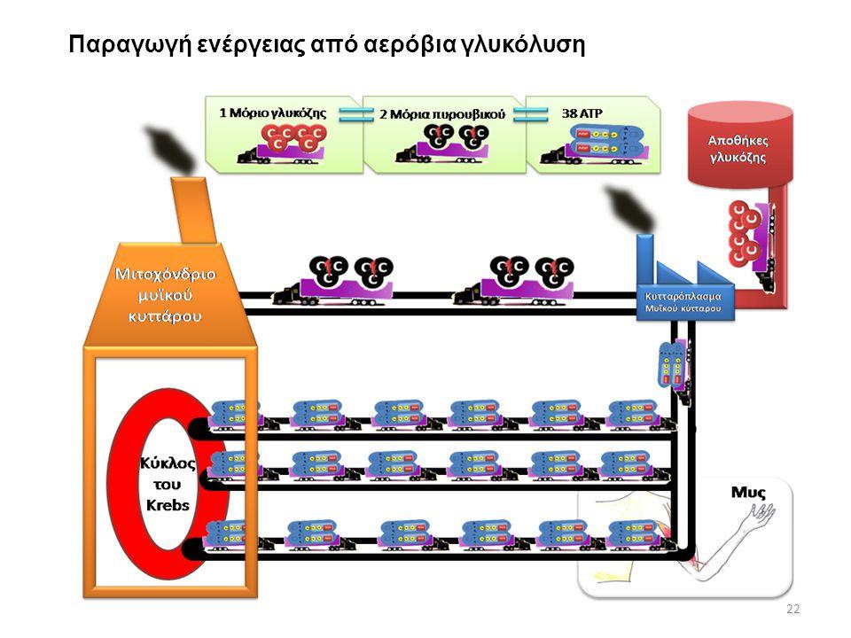 Παραγωγή ενέργειας από αερόβια γλυκόλυση