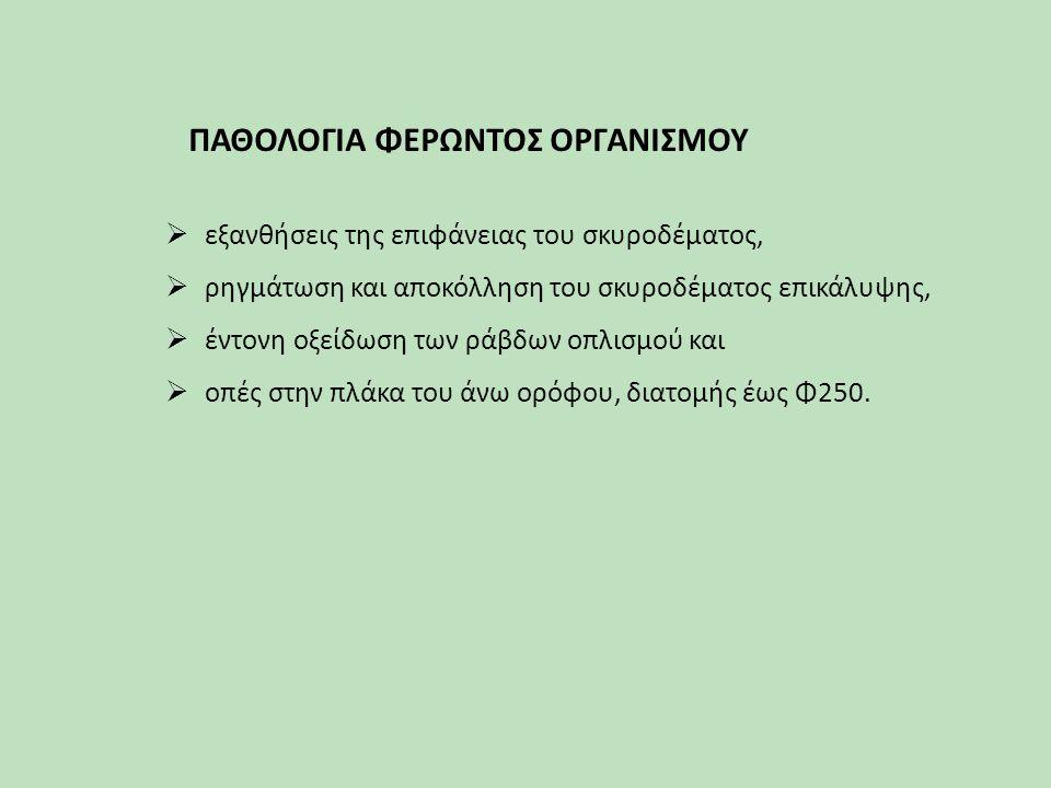 ΠΑΘΟΛΟΓΙΑ ΦΕΡΩΝΤΟΣ ΟΡΓΑΝΙΣΜΟΥ
